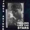 Couverture du titre Falling like the Stars