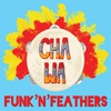 Cover of the album Funk'n'Feathers