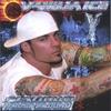Couverture de l'album Platinum Underground