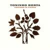 Cover of the album Toninho In Vienna