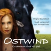 Cover of the album Ostwind