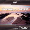 Couverture de l'album Dancing on the Beach - By Pulsar