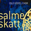 Cover of the album salmeskatt