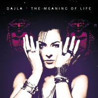 Cover of the track The Meaning of Life