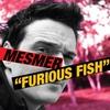 Couverture de l'album Furious Fish Lp