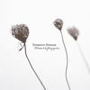 Couverture de l'album El éxtasis de las flores pequeñas