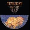 Couverture de l'album Tempest