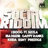 Couverture de l'album Social Riddim