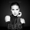 Couverture de l'album Elég - Single