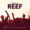 Couverture de l'album Reef: The Best Of