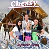 Cover of the album Cinderella Baby (Apres Ski Mix) - Single