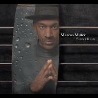 Cover of the track Silver Rain