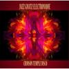 Couverture de l'album Crimson Temple Disco