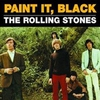 Cover of the track Paint It Black