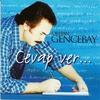 Cover of the album Cevap Ver ...