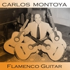 Couverture de l'album Flamenco Guitar