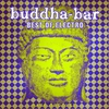 Couverture de l'album Buddha-Bar: Best of Electro - Rare Grooves