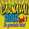 Couverture de l'album Carnaval 2012 (De Grootste Hits deel 2)