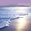 Couverture de l'album Calming Sea - Anniversary Collection