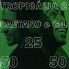 Cover of the album Tropicália 2