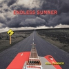 Cover of the album Endless Sumner