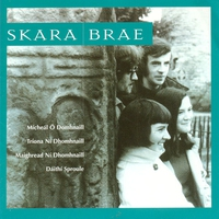 Cover of the track Skara Brae