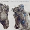 Cover of the album The Way We Look at Horses