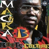 Cover of the album Roots & Culture