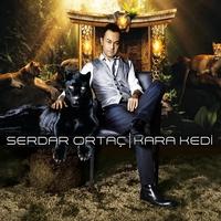 Cover of the track Kara Kedi