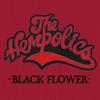 Cover of the album Black Flower (Radio Edit) - Single