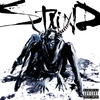 Couverture de l'album Staind (Deluxe Version)