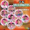 Couverture de l'album 14 Vallenatos Romanticos Vol. 6