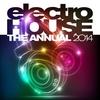 Couverture de l'album Electro House the Annual 2014