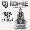 Cover of the album You're the Voice (feat. Gebroeders Rossig) - Single