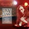 Couverture de l'album Live In Vienna