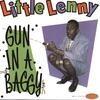 Couverture de l'album Gun in a Baggy