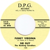 Couverture de l'album Funky Virginia (feat. Rocking Cavaliers) - Single