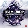 Couverture de l'album Voices (feat. Reggie Saunders) - Single