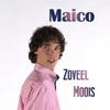 Couverture de l'album Zoveel Moois - Single
