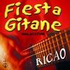 Cover of the album Fiesta gitane autour d'un feu, vol. 1 (Malacatum)