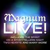 Couverture de l'album Magnum - Live! (Live)