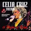 Couverture de l'album A Night of Salsa (Broadway Edition) [Live]