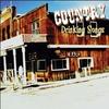 Couverture de l'album Country Drinking Songs