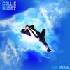Couverture de l'album Blue Dreamz