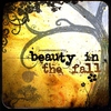 Cover of the album Beauty In the Fall