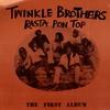 Couverture de l'album Rasta Pon Top