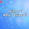 Couverture de l'album Best of Amit Trivedi