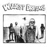 Couverture de l'album Wildest Dreams