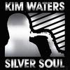 Couverture de l'album Silver Soul