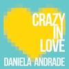 Couverture de l'album Crazy in Love - Single